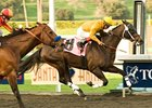 "Ventana (left) finished a half-length behind Kinsale King in the Palos Verdes Handicap.<br><a target=""blank"" href=""http://www.bloodhorse.com/horse-racing/photo-store?ref=http%3A%2F%2Fpictopia.com%2Fperl%2Fgal%3Fprovider_id%3D368%26ptp_photo_id%3D8758153%26ref%3Dstory"">Order This Photo</a>"