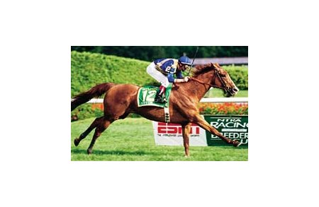 John's Call, Jean-Luc Samyn up, shown winning the Gr. I Sword Dancer at Saratoga.