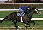 Flat Out worked 4 furlongs in :48 on November 19 at Churchill Downs.