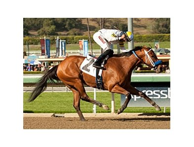 Izzy Rules wins the Las Flores Stakes.