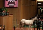 A $700,000 Tapit colt topped the second day of the Keeneland September yearling sale.