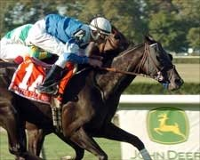 Better Talk Now Speaks Loudly in Man O' War