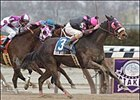 Bank Audit, with Richard Migliore up, captures the Distaff Breeders' Cup at Aqueduct.
