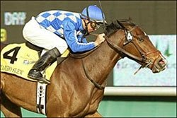 Mambo Slew Beats Turf Fillies in Miesque