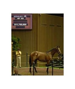 Kingmambo-Crown of Crimson yearling colt, sold for $11.7 million, among nominees to 2008 Vodafone Derby.