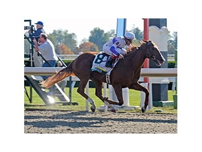 "Square Eddie won the Breeders' Futurity in his previous Keeneland start.<br><a target=""blank"" href=""http://www.bloodhorse.com/horse-racing/photo-store?ref=http%3A%2F%2Fpictopia.com%2Fperl%2Fgal%3Fprovider_id%3D368%26ptp_photo_id%3D7997606%26ref%3Dstory"">Order This Photo</a>"