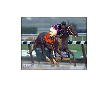 "<a href =""http://www.exclusivelyequine.com/ee.asp?PI=P14-1015"" target=""blank"">Champagne winner First Samurai, one of the most exciting horses entered in the Breeders' Cup.</a>"