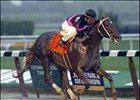 "<a href =""http://www.exclusivelyequine.com/ee.asp?PI=P14-1015"" target=""blank"">Champagne winner First Samurai makes his 2006 debut in the Hutcheson Stakes.</a>"