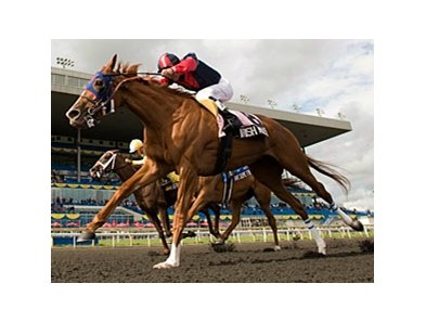 Irish Mission wins the Woodbine Oaks.