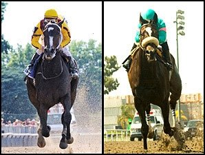 Live Video of Rachel, Zenyatta on NTRA.com
