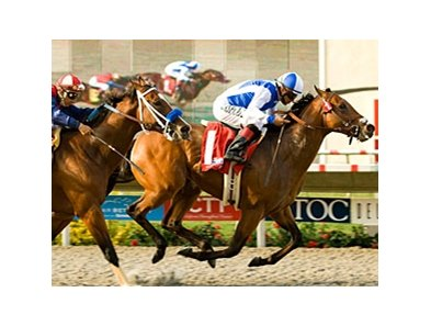 "J P's Gusto scored a half-length win in the Best Pal Stakes at Del Mar.<br><a target=""blank"" href=""http://www.bloodhorse.com/horse-racing/photo-store?ref=http%3A%2F%2Fpictopia.com%2Fperl%2Fgal%3Fprovider_id%3D368%26ptp_photo_id%3D9134902%26ref%3Dstory"">Order This Photo</a>"