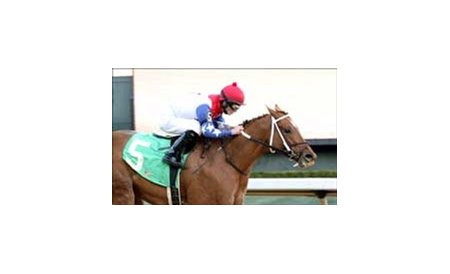 Sir Five Star rallied from off the pace to win the Mountain Valley Stakes by 8 1/2 lengths, Saturday at Oaklawn Park.