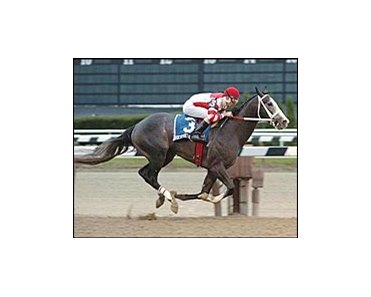 Rockport Harbor sails to victory in the Nashua Stakes.