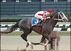 Rockport Harbor Sails to Victory in Nashua Stakes