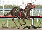 While rain impacted racing in California and New York, High Fly cruised to victory in the Aventura Stakes in Florida.