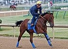 American Pharoah Gallop, May 23, 2015