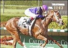 Flamenco, winning Calder's Jack Price Juvenile.