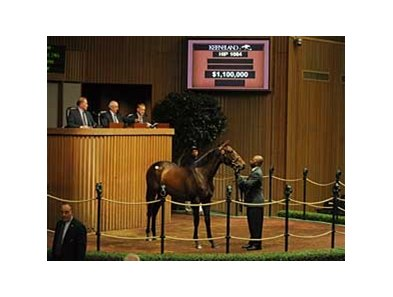 Hip 1084; filly; Medaglia d'Oro - Amizette by Forty Niner  brought a final bid of $1.1 million to lead the way on day 4 of the Keeneland September Yearling sale.