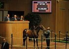This Medaglia d'Oro - Amizette filly brought a final bid of $1.1 million.