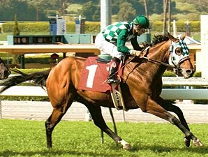 Grade III Winner Lucky J.H. Retired