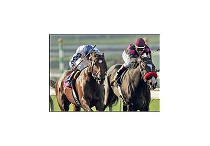 Cozy Guy, left, hangs on to beat Lava Man and win the California Cup Classic, Saturday at Santa Anita.