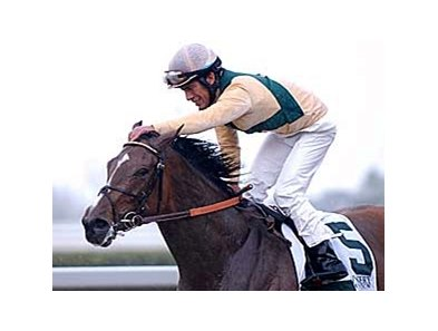 Mary Delaney won the April 11 Vinery Madison Stakes (gr. II) at Keeneland.