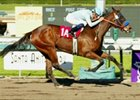 Sweet Catomine Glides to Santa Ysabel Win
