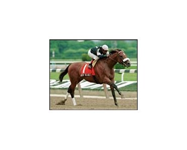 Albert the Great, shown here winning the Brooklyn Handicap.
