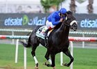'Salsa' Spicy in Godolphin Mile Victory