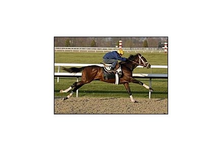 Any Given Saturday worked fastest of three Todd Pletcher Derby contenders at Keeneland Sunday.