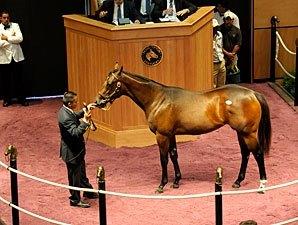 Medaglia d'Oro Filly Sells for $370,000