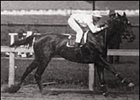 Maskette winning the Gazelle Handicap at Gravesend.