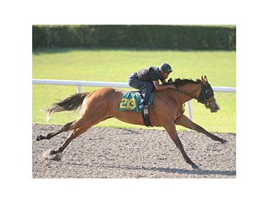 Hip #213, filly, Indian Charlie - Winter Forest, by Forestry, worked 1/8 of a mile in in :9 4/5.