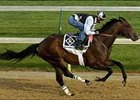 Sharp Humor breezed a mile at Churchill Downs Thursday.