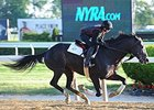 Honor Code