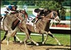 Macho Uno, shown winning the Pennsylvania Derby, won the MassCap Saturday at Suffolk Downs.