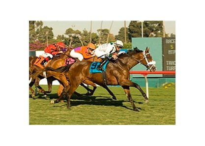 "Sea Chanter fights for victory in the Miesque Stakes.<br><a target=""blank"" href=""http://www.bloodhorse.com/horse-racing/photo-store?ref=http%3A%2F%2Fpictopia.com%2Fperl%2Fgal%3Fprovider_id%3D368%26ptp_photo_id%3D2860419%26ref%3Dstory"">Order This Photo</a>"
