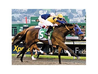 California Derby winner Ranger Heartly returns in the El Camino Real Derby.
