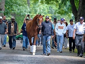 Move to Belmont Stakes Barn Orderly