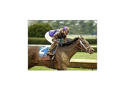Coin Silver carries Javier Castellano to convincing win in sloppy Coolmore Lexington.