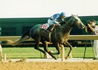 Benburb wins included the 1992 Molson Millions.