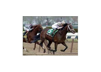 West Virginia, ridden by Norberto Arroyo Jr., races ahead of Funny Cide to capture the Excelsior Breeders' Cup.