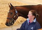 Dutch Art Filly Leads the Way at Tattersalls