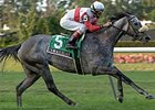 "Criminologist is the lone graded stakes winner in the Cardinal Handicap (gr. IIIT) Saturday at Churchill Downs.<br><a target=""blank"" href=""http://www.bloodhorse.com/horse-racing/photo-store?ref=http%3A%2F%2Fpictopia.com%2Fperl%2Fgal%3Fprovider_id%3D368%26ptp_photo_id%3D2509944%26ref%3Dstory"">Order Criminologist Photo</a>"