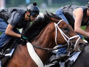 Travers Notes: Quality Road in Final Breeze