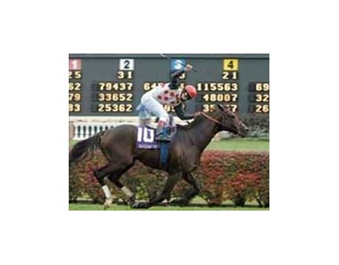 "BC Mile winner Miesque's Approval is three-time FTBOA winner.<br><a target=""blank"" href=""http://www.bloodhorse.com/horse-racing/photo-store?ref=http%3A%2F%2Fpictopia.com%2Fperl%2Fgal%3Fprovider_id%3D368%26ptp_photo_id%3D634007%26ref%3Dstory"">Order This Photo</a>"