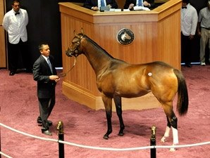 Medaglia d'Oro Filly Fetches $425,000 at FTK