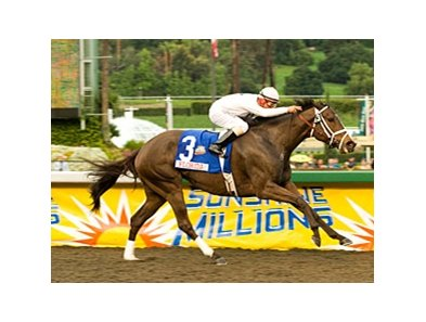 "Leah's Secret and Eibar Coa take the Sunshine Millions Distaff.<br><a target=""blank"" href=""http://www.bloodhorse.com/horse-racing/photo-store?ref=http%3A%2F%2Fpictopia.com%2Fperl%2Fgal%3Fprovider_id%3D368%26ptp_photo_id%3D7536705%26ref%3Dstory"">Order This Photo</a>"