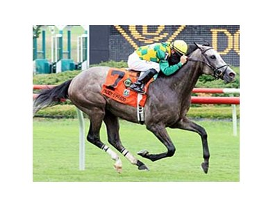Paddy O'Prado will try to continue his winning ways in the Secretariat.