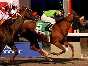 Stakes Winner Smart Surprise Retired